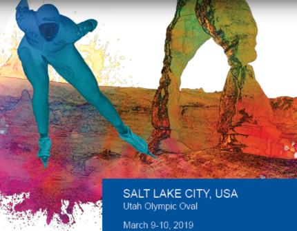 Salt Lake wb finale logo